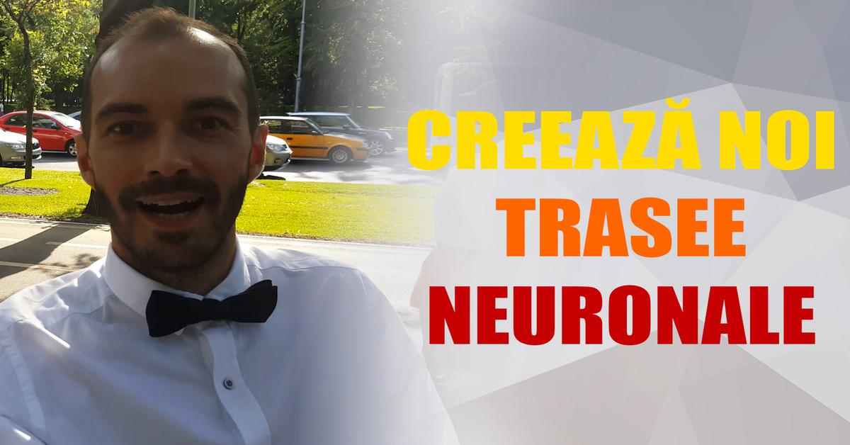 Dezvolta Noi Cai Neuronale